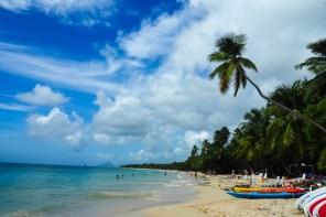 Martinique: Wer suchet, der findet