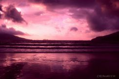 casawati-pantai-damas-trenggalek-twilight