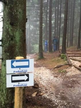 Blick auf den Trail