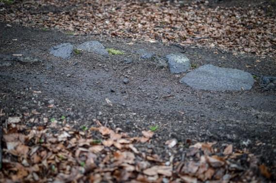 Die Teststrecke bot gengügen Gelegenheiten, um die Laufräder auf ihre Nehmerqualitäten zu testen. Von schwarfen Steinen, ...