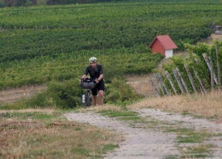 Wer sein Fahrrad liebt, der schiebt.