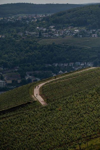 Die Weinberge des Rheingau bescherten den Fahrern brutale Hitze - Foto by Nils Laengner