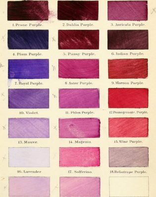 Colors from Robert Ridgway's 'A Nomenclature of Colors for Naturalists : And Compendium of Useful Knowledge for Ornithologists' (1886) (via Boston Public Library/Wikimedia)