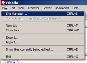 Install WordPress on Local Hosting filezilla first step