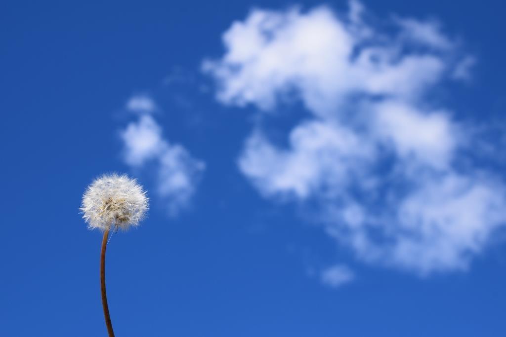 3 astuces pour trouver l'inspiration