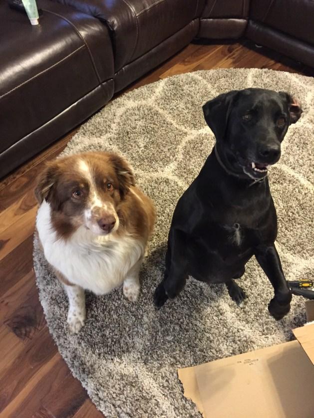 Rudy and Maya