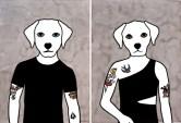 Rona-Green-dog-illustration-Theodor-Crazy-Daisy