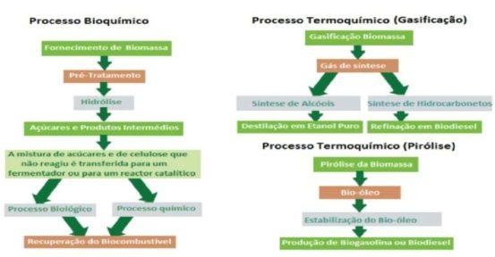 sustentabilidade na produção de biocombustível