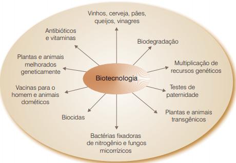 Biotecnologia e Transgênicos