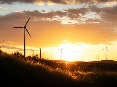 wind turbines on green grass field during sunset