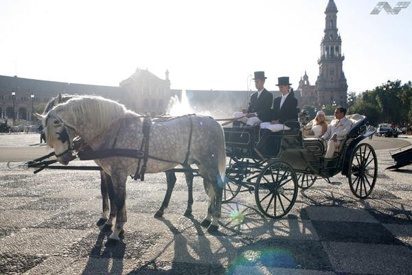 Coche de caballos para bodas