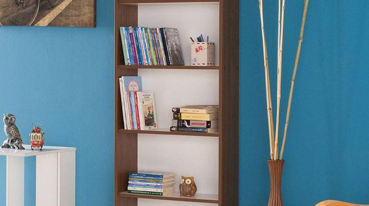Modele de biblioteci ieftine pentru iubitorii de carte