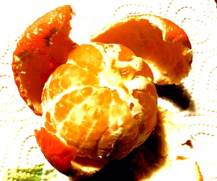 Lessico famigliare, anche tu mangi le bucce delle arance mamma?