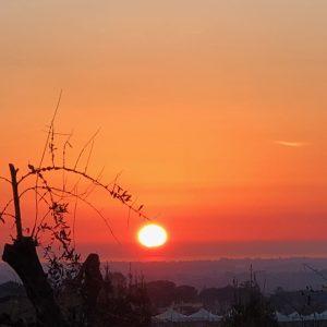 Il tramonto della mamma blogger, e ora che SEO?