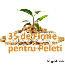 35 de Firme pentru Peleti. Unde Gasesti Peleti Ieftini si Cand sa-i Cumperi