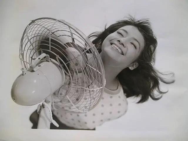 Cel mai Bun Ventilator cu Picior Oscilant [Review]