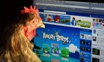 angry birds Share Play
