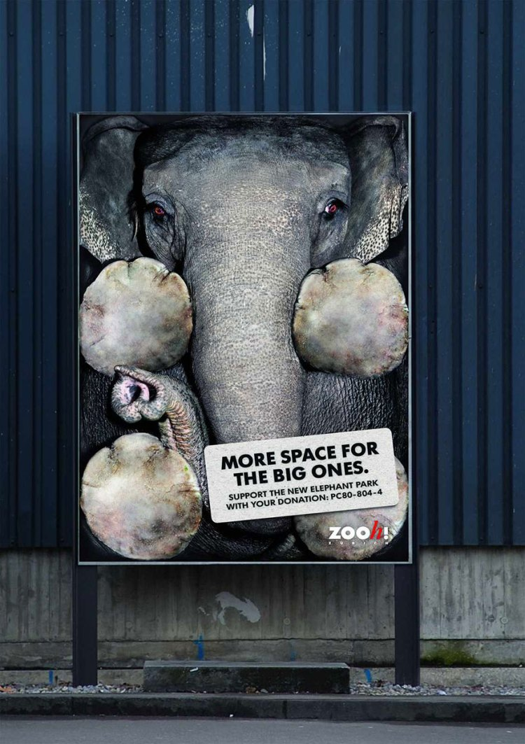 Zoológico de Zurich: más espacio para el grandes