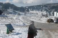lanzando-nieve