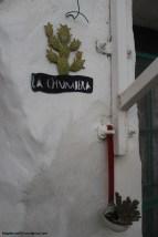 chumbera