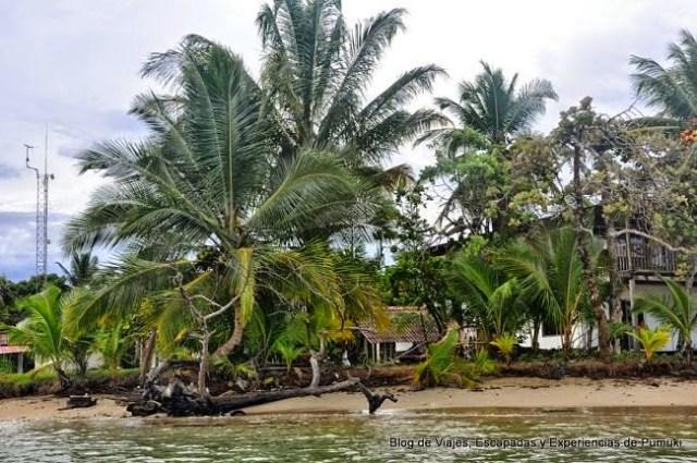 Playa del Drago en Bocas del Toro desde la barca camino a Playa Estrella