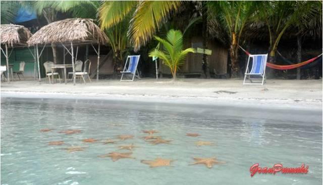 Excursión a la playa de las Estrellas. En Blog de Viajes, Bocas del Toro con niños