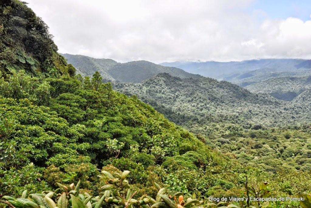 Mirador de la Ventana en Montverde. Vista hacia el océano Atlántico