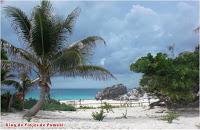 Blog de Viajes a Mexico, Riviera Maya. Paraiso natural para tus vacaciones en familia