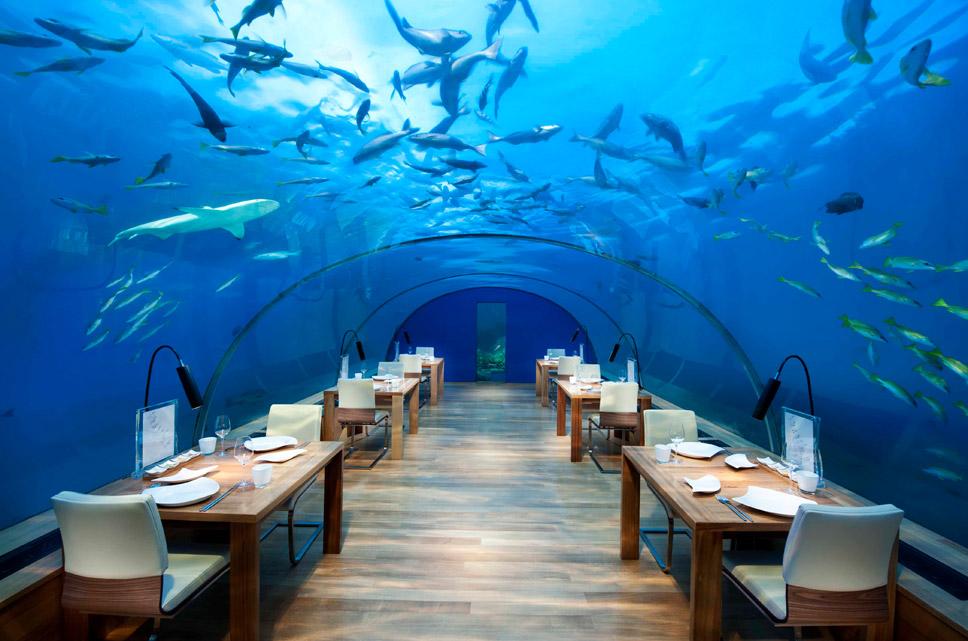 Sabores do Mundo: Maldivas