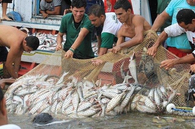 Blog do Bordalo 800px Abertura da pesca 01