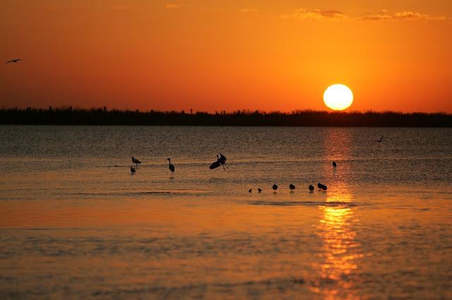 Blog do Bordalo sunset 896949 1280