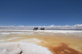Walmir Cirne - Deserto de sal - Bolívia (5)