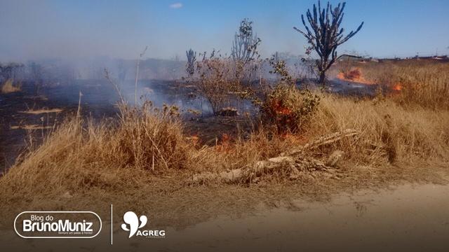 Santa Cruz do Capibaribe registra mais um incêndio proveniente de queimada criminosa