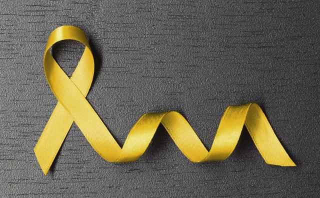 Hospital Mestre Vitalino (HMV), promoverá palestra sobre câncer infanto-juvenil