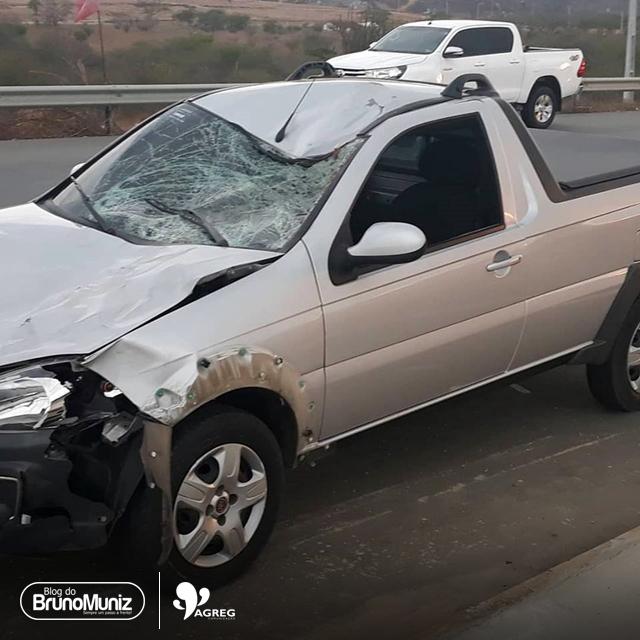 Animal solto provoca acidente na rodovia PE-160 em Santa Cruz do Capibaribe