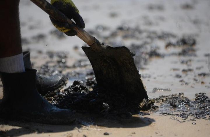 Mais de 1.540 toneladas de óleo foram coletados nas praias e rios pernambucanos