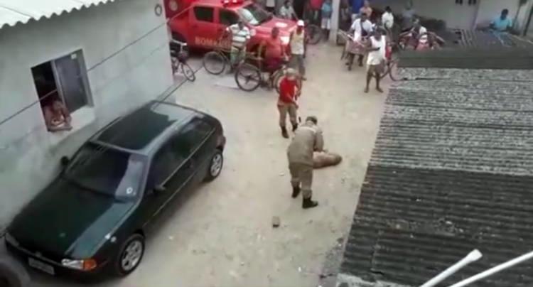 Homem é atacado por pitbull em Pernambuco