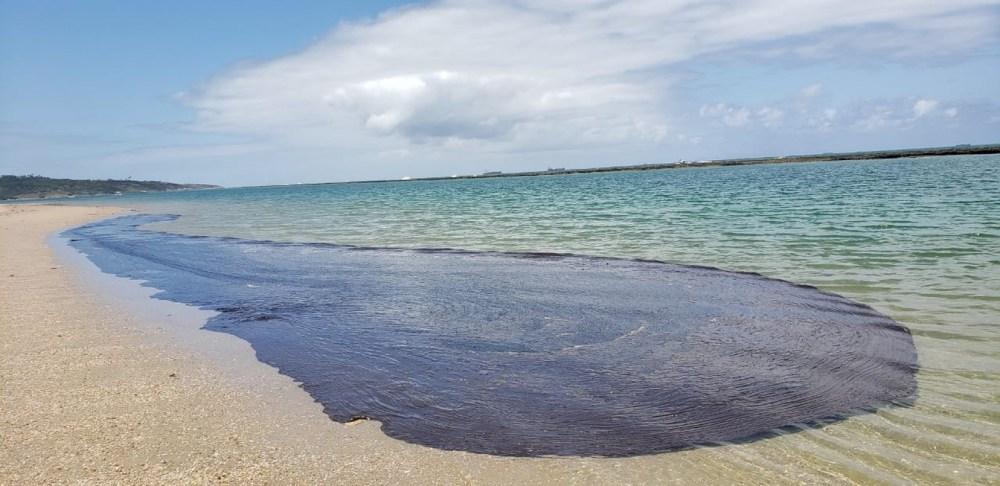 Em Pernambuco, chega a 257 toneladas de óleo retirado das praias
