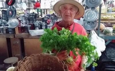 Idoso que comercializava coentro nas ruas de Santa Cruz do Capibaribe morre após ser atropelado