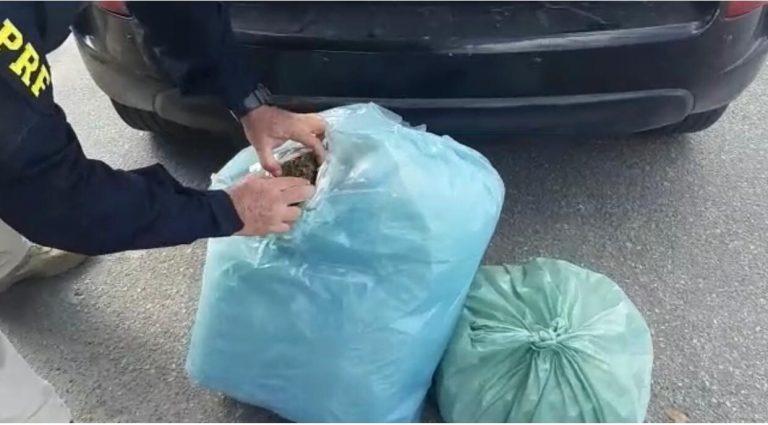 Motorista é detido pela PRF em São Caetano com 13 quilos de maconha