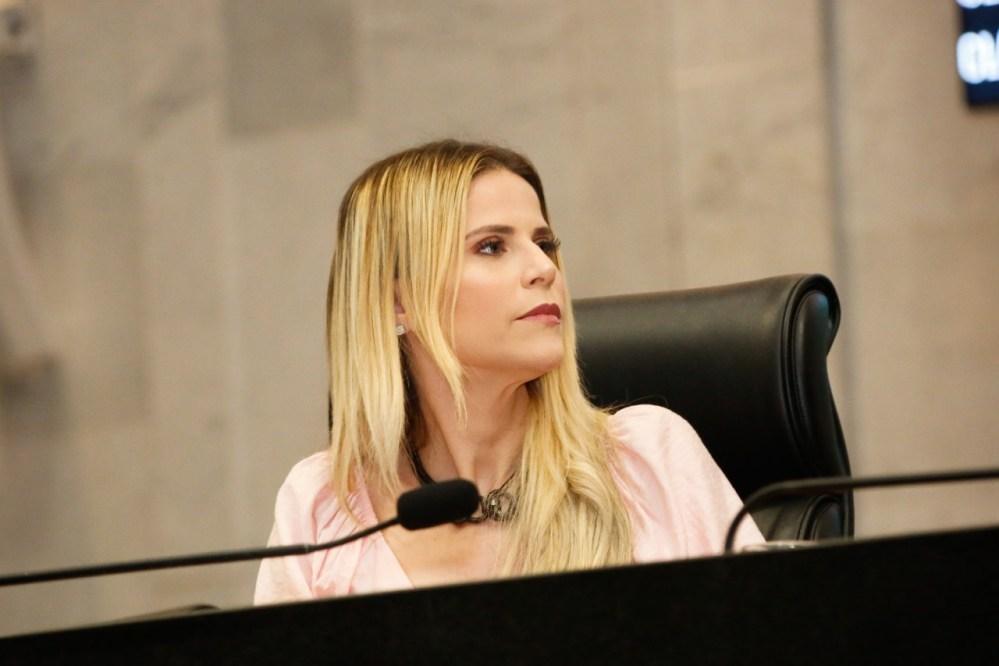 Deputada estadual de Pernambuco apresenta projeto que visa proibir a permanência de adultos sem crianças em espaços de lazer infantil