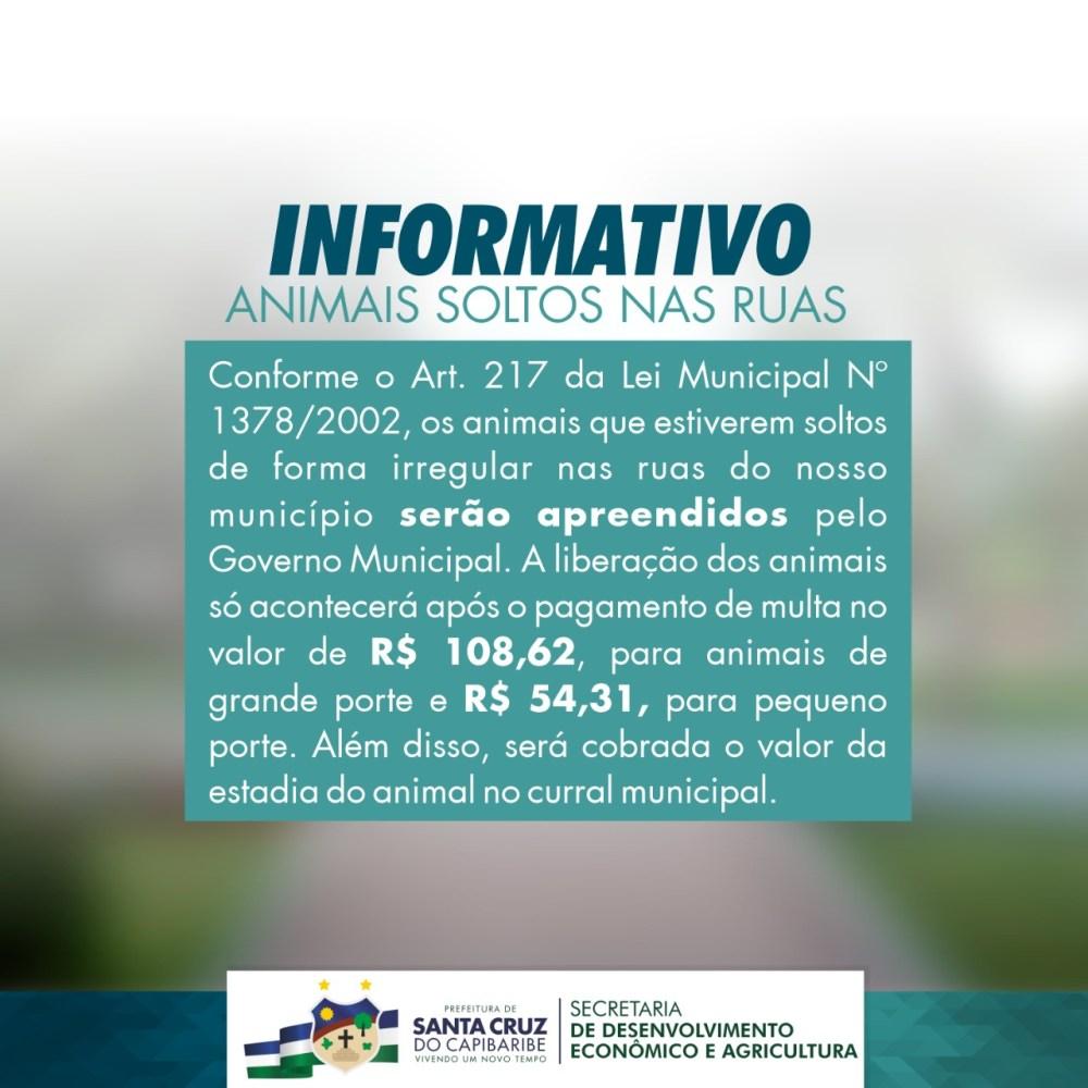 Secretaria de Desenvolvimento Econômico e Agricultura comunica população sobre apreensão de animais nas ruas de Santa Cruz do Capibaribe