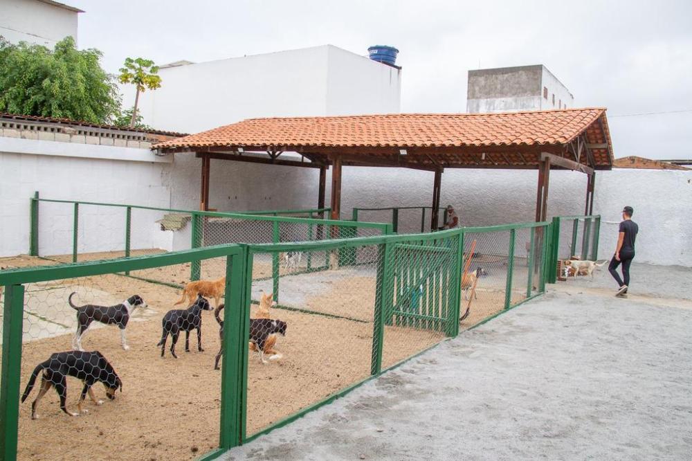 Santa Cruz realiza inauguração do Centro de Acolhimento Temporário de Animais nesta sexta-feira