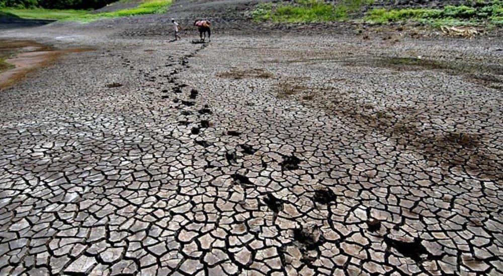 Pernambuco decreta situação de emergência em 55 municípios do Sertão em virtude da seca