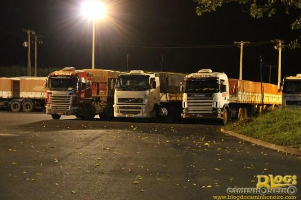 caminhoneiros do Brasil