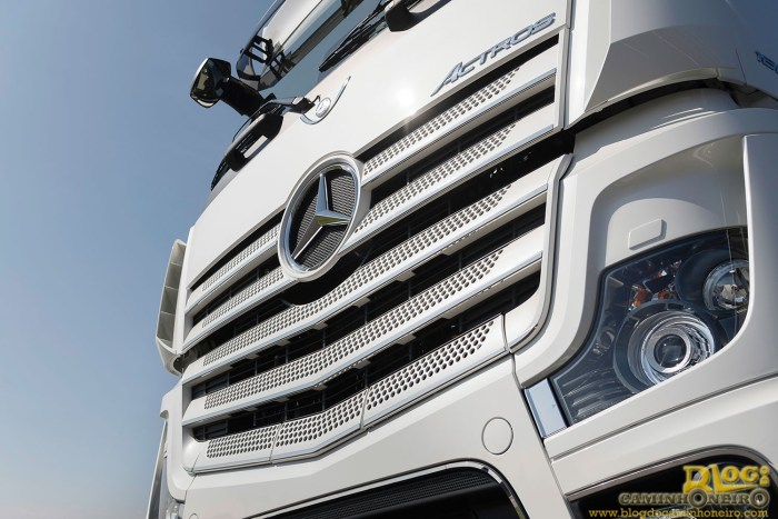 actros (5)