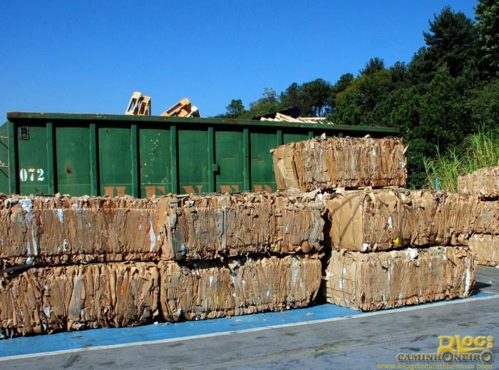 Ford-ReciclagemPapelao