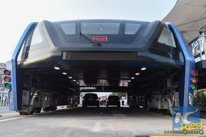 Transit Elevated Bus china (2)