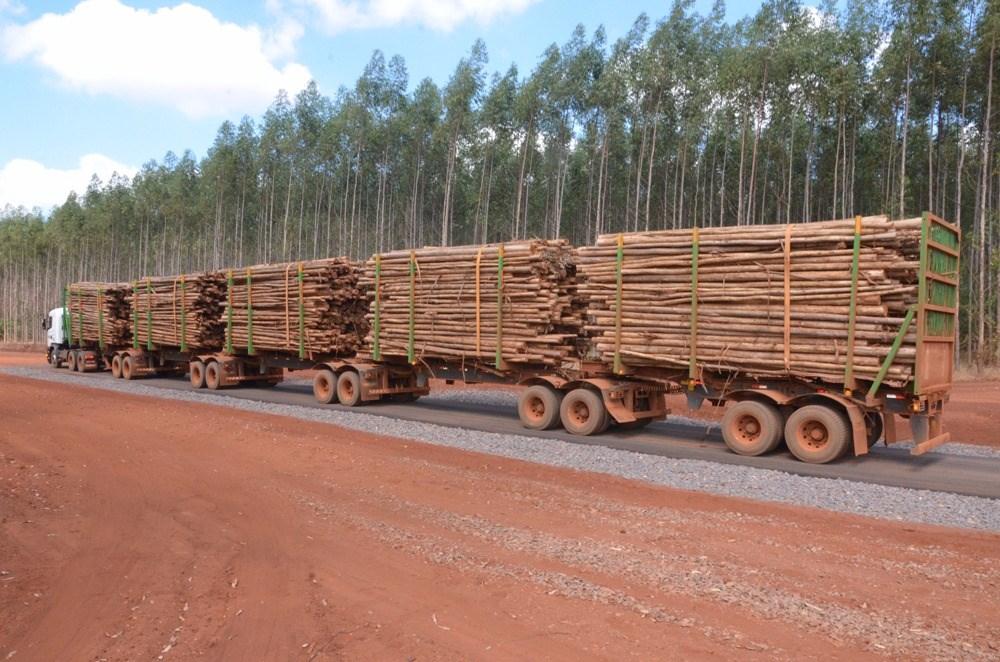 Em 2018, Fibria estará operando com 30 super-caminhões para transportar madeira
