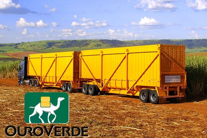 Ouro Verde Transportes tem mais de 200 vagas para motoristas carreteiros em SP e MS